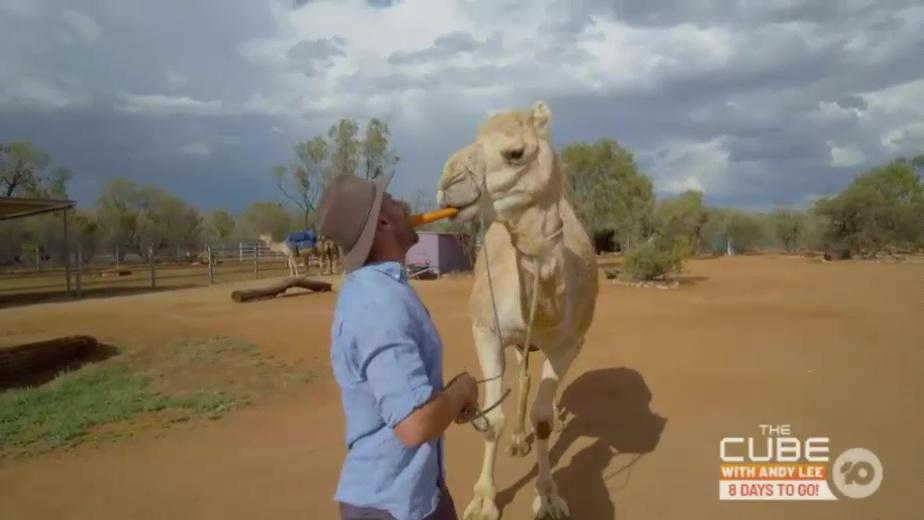 Recap: The Amazing Race Australia 5, Episode 9
