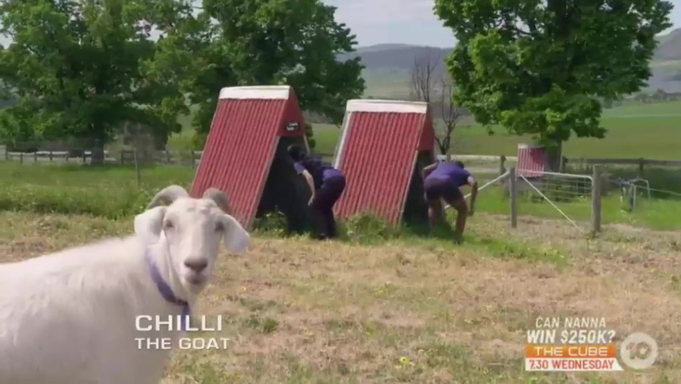 The Amazing Race Australia 5 Episode 16 Recap