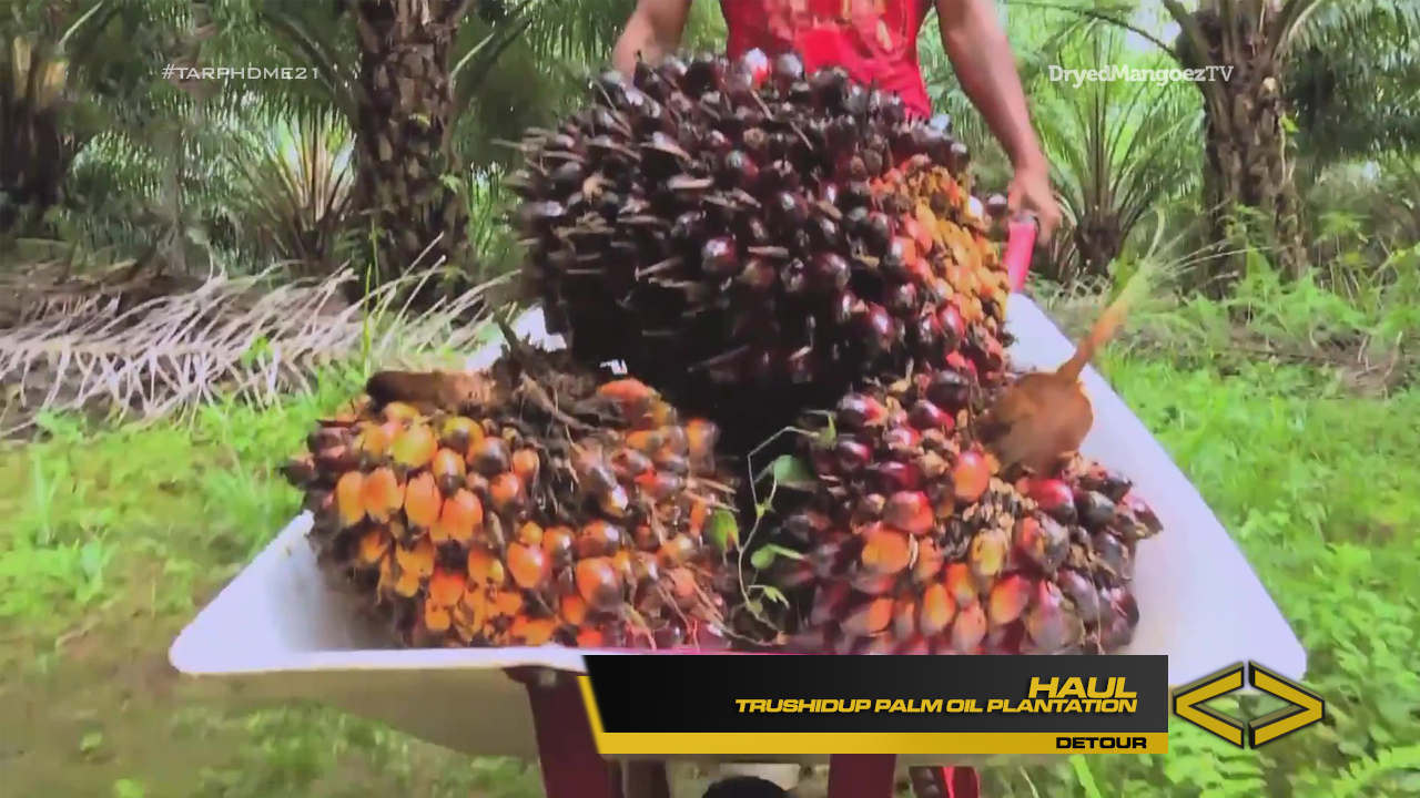 Amazing Race Philippines DryedMangoez Edition Season 21 Leg 5