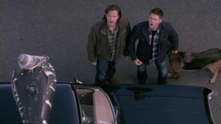 Supernatural 905