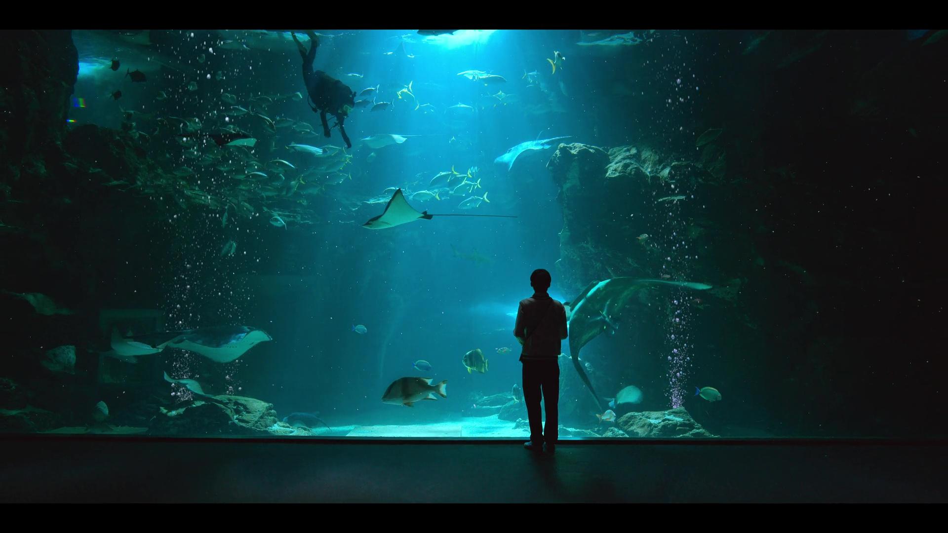 Move to Heaven Netflix Korean Drama Review